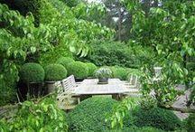 gardens / by Kathryn M Ireland