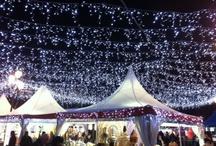 Christmas/Navidad / by Fiona Watson