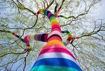 Tree magic / by Jaloola