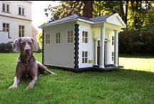 Pet Real Estate / Furry property lovers unite. / by realestate.com.au
