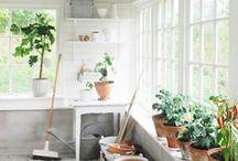 Gardens Galore / by Heather Bullard