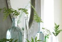 DIY Design Projects / Home decorating, gardening / by Lisa Roppolo
