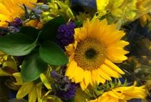 Floral / Floral Inspirations / by Acme Markets