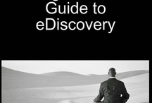 My Future Career - [eDiscovery] / by Kristy Poth