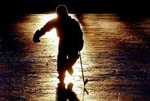 Hockey / by trulytrayce