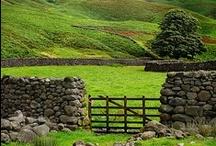 Ireland / by Jayna Rice