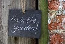 Gardening / by rkgardens