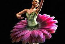 mosso・・Ballet favorite thing / My hobby / by Junko Okabayashi