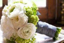 Wedding / by Melissa Seymour