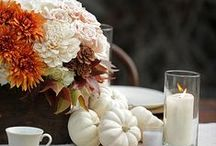 Fall / by Melissa Seymour