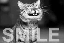 Just... SMILE  ツ / by Kim Boyer