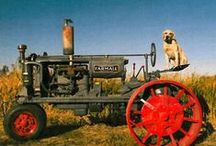 Old Farm Tractors / by Neil Kratzer