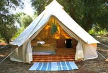 Camping / by Karen Alberga