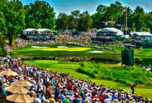 Photos of the Year 2012 / Two PGA TOUR staff photographers, Stan Badz and Chris Condon, selected their top 10 photos that they took during 2012 in and around the golf season.  / by PGA TOUR