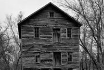 Historical Nonesuch / by Callie Rhodes