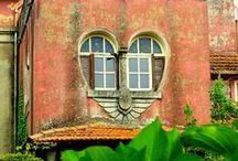 Home: Windows / by Jenny Prust