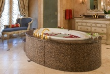 Luxury Master Bath / by Haleh Design