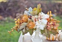 Wedding Ideas / by Ashley Ohnmeiss-Moyer