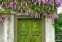 Door Love / by Irene Grubb