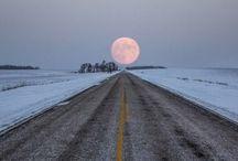 Roads / by Maeve Nicholson