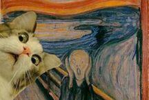 I just really like cats, okay? / by Emily Shelley
