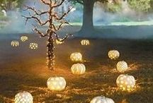 Pumpkins / by The Spider's Parlor
