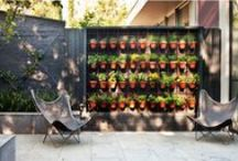Outdoor Style / by Catherine Chugg