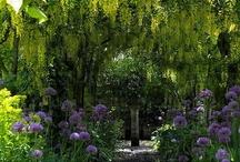 Gardening~ Famous Gardens, Gardeners, & Garden Designers / by Benita Kerr Brown