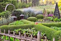 edible garden / by Kathy Thomas