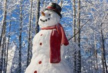 Snowman / Everything snowman or snow something  / by Tina Sloan