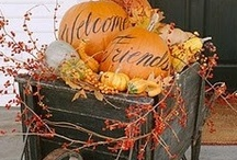 Fall and Halloween / by Patti Nieman