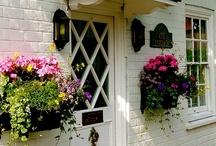 Cottage / by Mona Thompson / Providence Design