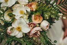 Design - Featherwood Flowers / florist branding / by Bec Matheson | Bec Matheson Photography