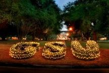 Georgia Southern - the BEST 4 years of my life! / by Kristen Bisanz