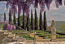 Ti Amo Italia / by Cheryl Hammill