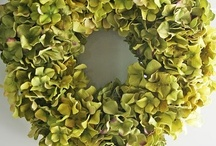 St. Patrick's Day / Crafts, decor, recipes and ideas for St. Patrick's Day / by Jennifer Henson