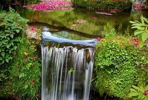 Beautiful water! / falls, lakes, rivers, oceans, ponds: raging and roaring, or calm and serene..........the magic of water. / by Nancy Sproull