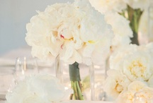 WEDDING / Dream Wedding .... Neutals, Pastels, Marquee, Barn, English Country House ... Pretty, Elegant & Chic.  / by May Smith
