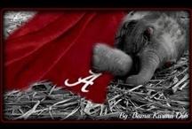 ~Alabama Football~ / by Jennifer Lummus