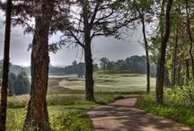 Westhaven Golf Club / by Westhaven Community in Franklin, TN