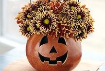 Trick or Treat / by Merica Andric