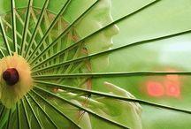 Umbrellas / by Suite Spaces