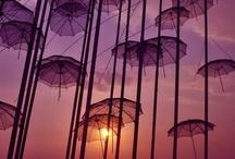under cover / by Plaidpoppy
