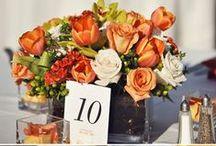 Fall Wedding Ideas / Fall Weddings are Beautiful / by Ornament Shop