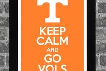 Go Vols! / by Susan House