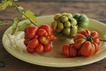 tempting tomatoes / by Laura Watt