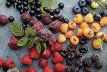 berries / by Laura Watt