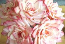 DIY Flowers / by Szilvia Barta
