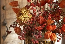 Great Holiday Ideas ~ Thanksgiving/Fall / by Rose Williams