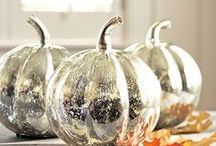 Festive Fall / Halloween & Thanksgiving..........just Fall in general / by Karen Moran